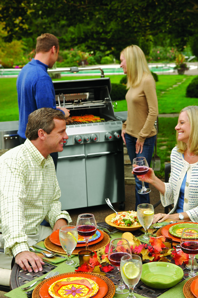 weber summit s470 gbs bbq stainless steel